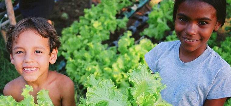 Scuole famiglia agricola in Brasile