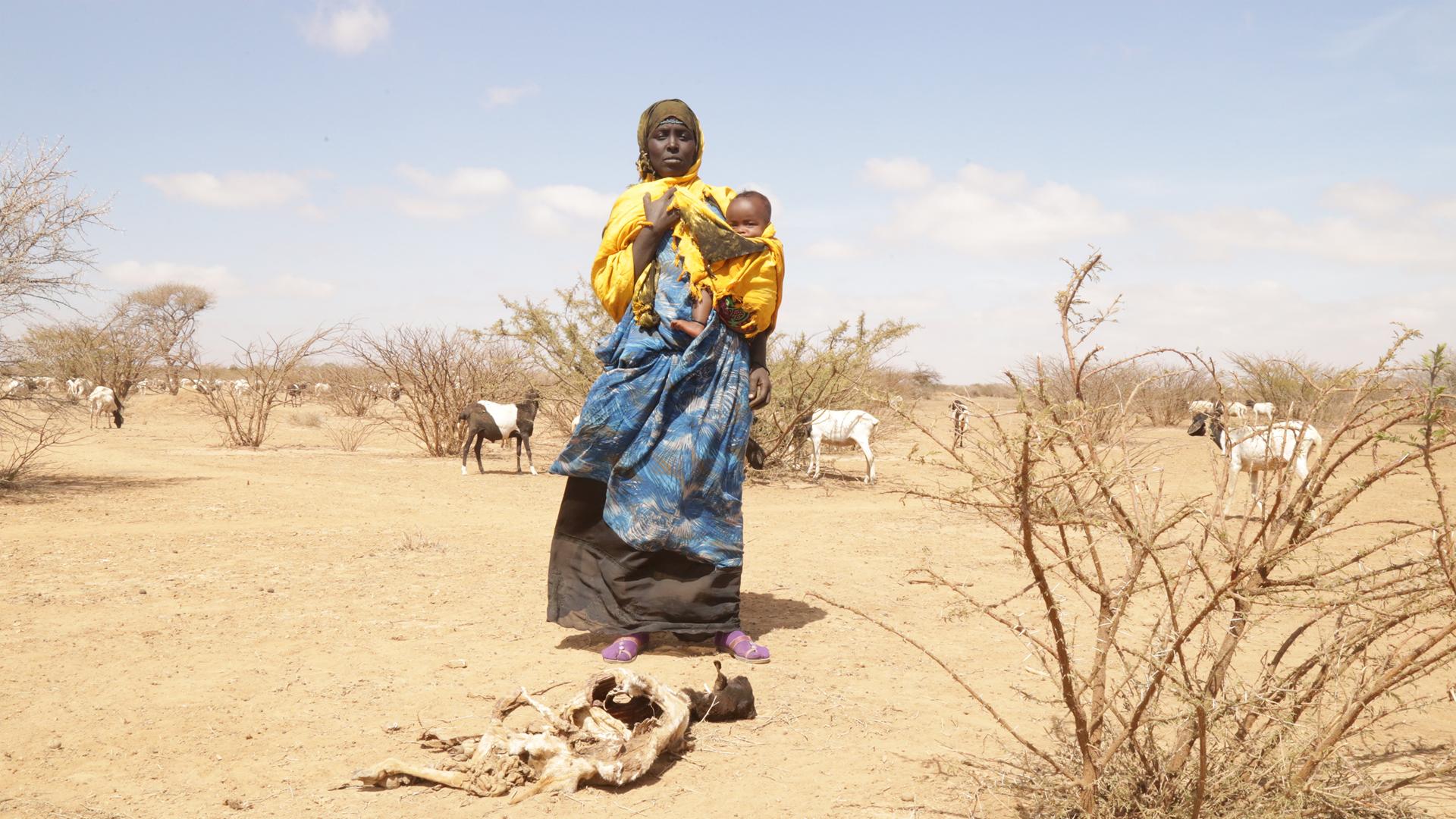 Emergenza siccità, c'è bisogno del tuo aiuto