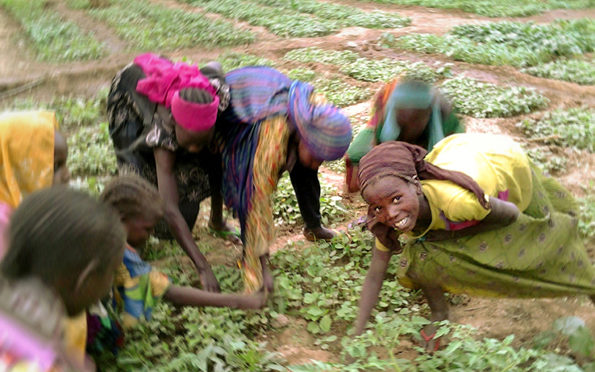 Orti e pozzi, il duro lavoro delle donne