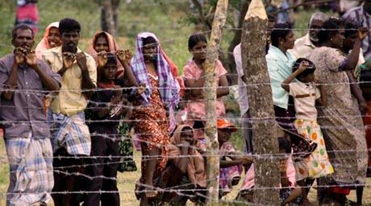 Guerra all'alcolismo nei campi profughi tamil
