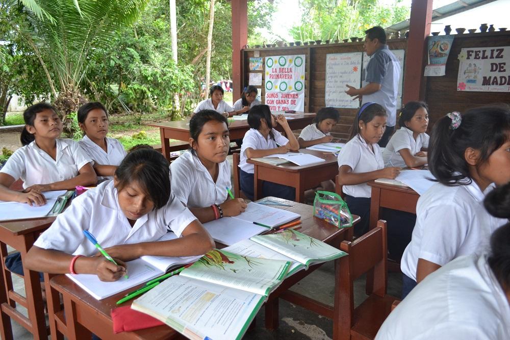 Valorizzazione e cura dell'Amazzonia