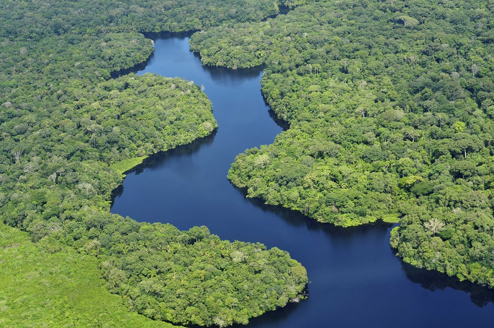 """""""Querida Amazonia"""" per tutti noi"""
