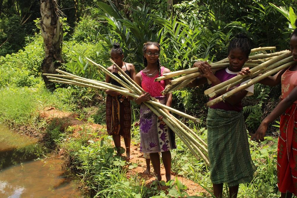 Formazione agricola per i giovani malgasci