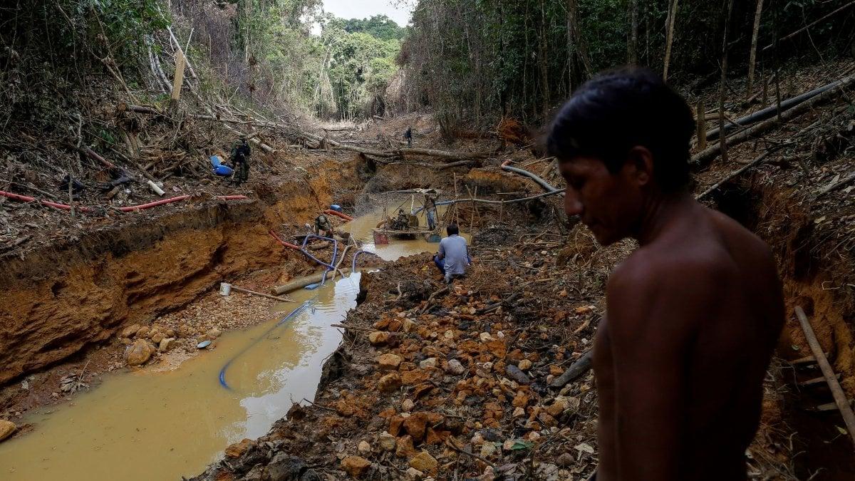 Amazzonia. Difendere le comunità indigene dal Covid-19