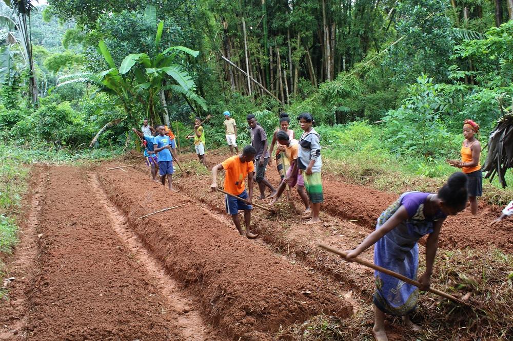 La formazione agricola continua